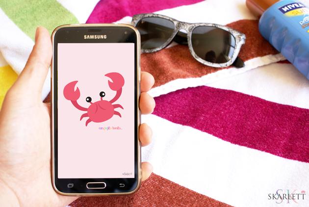 fondo-movil-cangrejo-verano