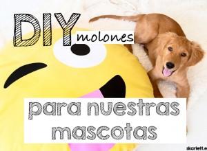 diy-mascotas